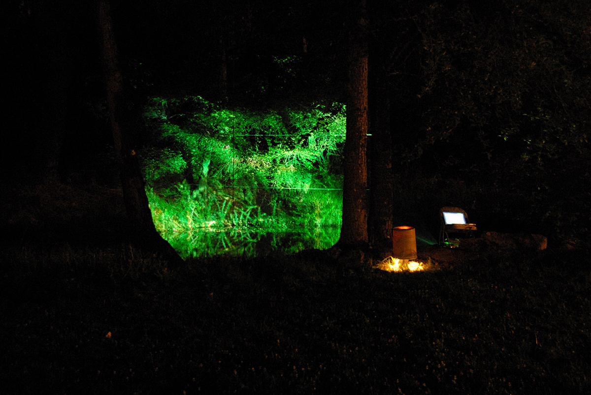 Short Films - Installation onto trees