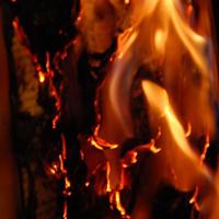 Burning Libraries